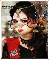 Aanchal Digest May 2014